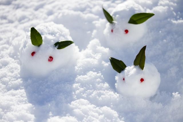 小学校受験 ももも お受験 0歳からのお受験対策 季節 冬